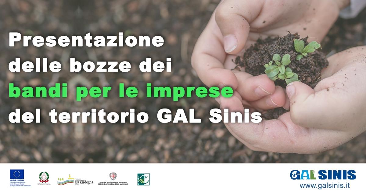 Presentazione delle bozze dei Bandi per le imprese del territorio del GAL Sinis